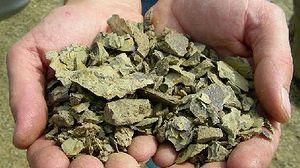 ポッジオ・アル・ソレのガレストロ土壌