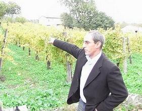 ヴァディアペルティのオーナーと畑