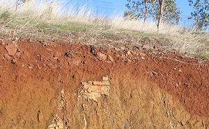 グリーンストーン・ヴィンヤードの土壌