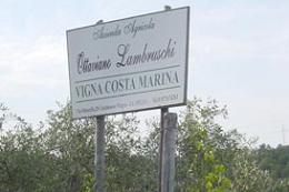 オッタヴィアーノ・ランブルスキ