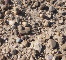 バルデフィンハス村の土壌